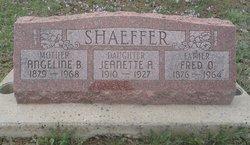 Angeline B Shaeffer