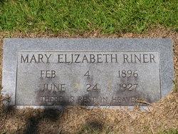 Mary Elizabeth <I>Wallbraun</I> Riner