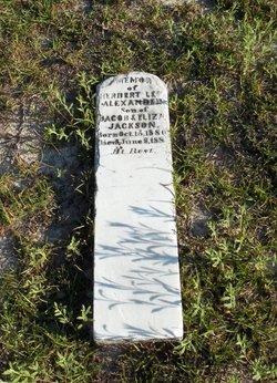 Herbert Lee Alexander Jackson