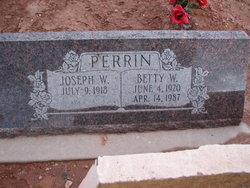 Elizabeth Wheeler Perrin