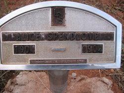 Alice Spendlove