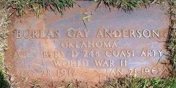 Burlas Gay Anderson
