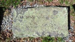 Moses Swift Wilcox