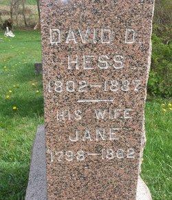 David D Hess