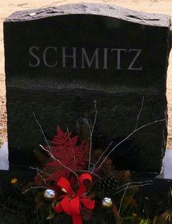 Steven J. Schmitz