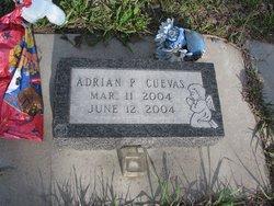 Adrian Pablo Cuevas