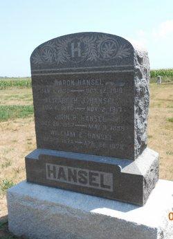 Aaron Hansel