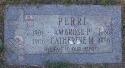 Ambrose P. Perri