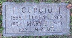 Mary J. Curcio