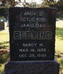 Andy J. Blevins