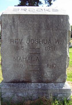 Rev Joshua William Brooks