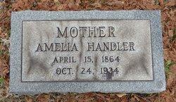 Amelia Handler