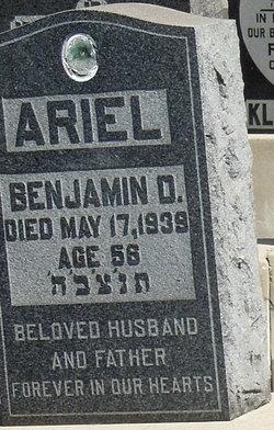 Benjamin D. Ariel
