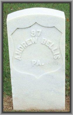Pvt Andrew Bellis