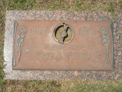 Faye J Young