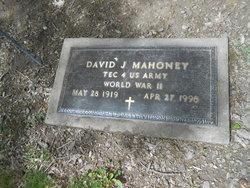 David J. Mahoney