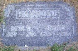 Rosa Emeline <I>Clark</I> Hammond