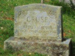 Jewel Cruse