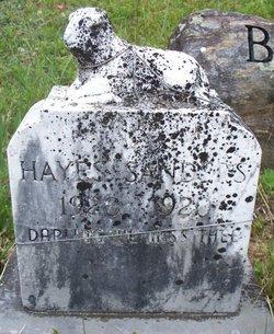 Hayes Sanders