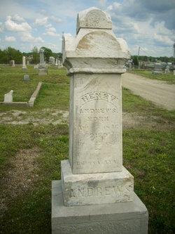 Henry Andrews
