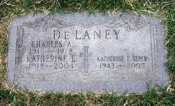 Charles A. Delaney, Jr