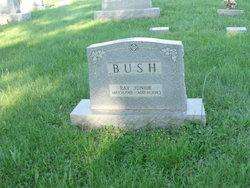 Ray Junior Bush