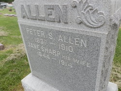 Peter S Allen