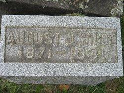 August J Wildt