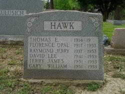 Thomas Edwin Hawk