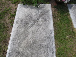 Albert Luther Akins