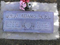 William Johns Adams
