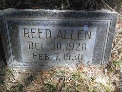Reed Allen