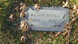 Lonnie Weldon Brinlee