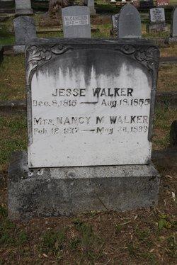 Nancy M Walker