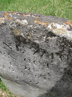 J. C. Newton