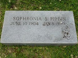 Sophronia S Pippin