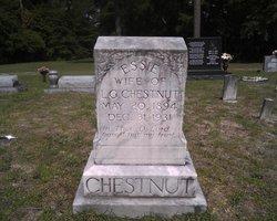 Essie <I>Chestnut</I> Chestnut