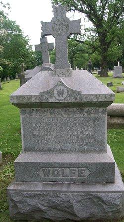 Daniel F. Wolfe