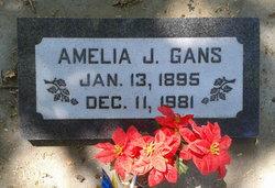 Amelia J. <I>Hinzman</I> Gans