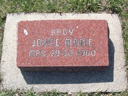 Joyce Marie Williamson
