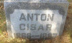 Anton Cisar