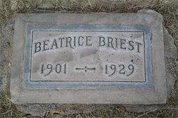 Beatrice Agnes <I>Castor</I> Briest