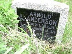 Arnold Anderson