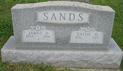 Sallie H. <I>Stimmel</I> Sands