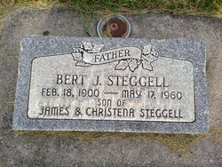 Bert Jonathan Steggell