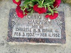Craig W Harper