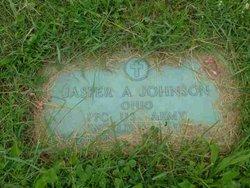 Jasper A. Johnson