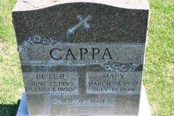 Peter S Cappa