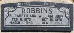 William John Robbins