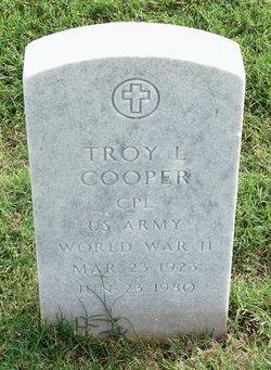 Troy L Cooper